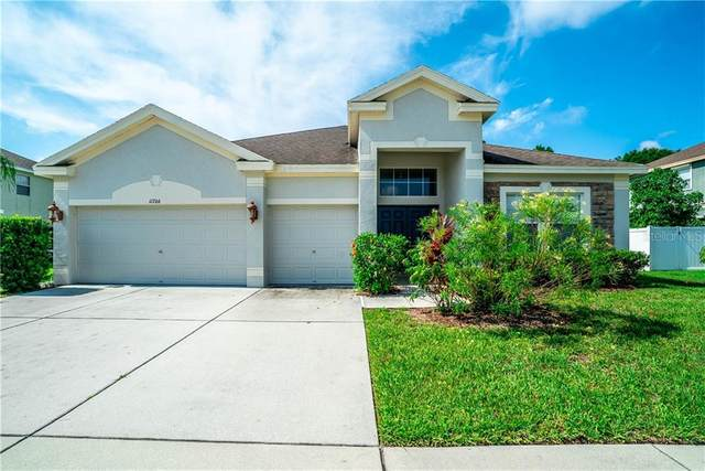 11706 Stonewood Gate Drive, Riverview, FL 33579 (MLS #T3245189) :: Zarghami Group