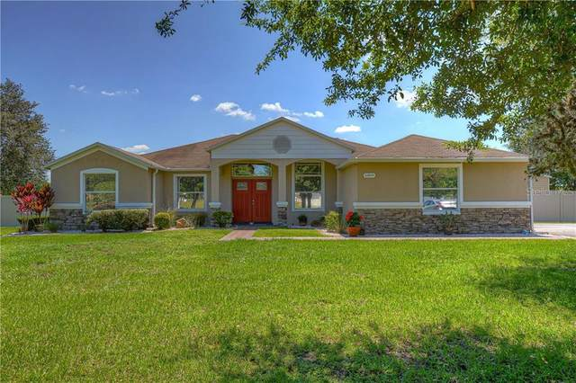 6809 Bloomfield Haven Place, Seffner, FL 33584 (MLS #T3245194) :: Cartwright Realty