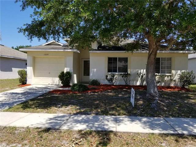 13239 Prestwick Drive, Riverview, FL 33579 (MLS #T3245197) :: Rabell Realty Group