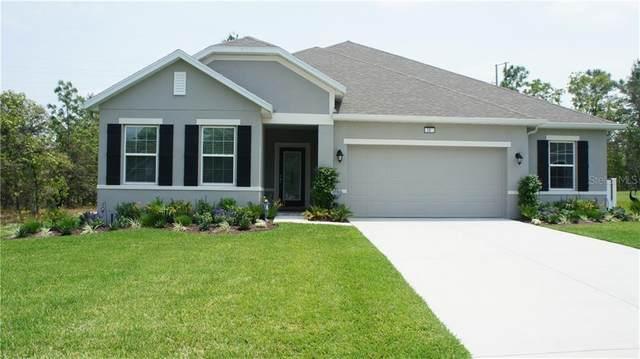 10 Lupine Street, Homosassa, FL 34446 (MLS #T3245201) :: Realty Executives Mid Florida