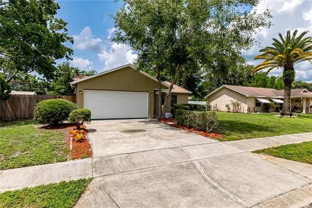 7841 Castle Drive, New Port Richey, FL 34653 (MLS #T3245203) :: Premier Home Experts