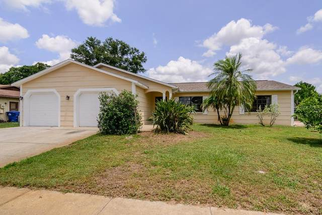 7805 Montrose Drive, New Port Richey, FL 34653 (MLS #T3245204) :: Premier Home Experts