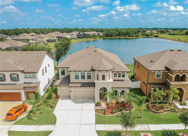 11410 Drifting Leaf Drive, Riverview, FL 33579 (MLS #T3245215) :: Lockhart & Walseth Team, Realtors