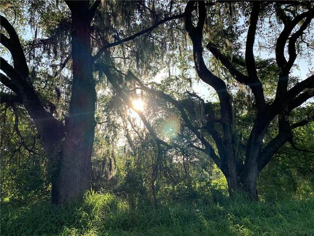 7100 Williams Road, Seffner, FL 33584 (MLS #T3245220) :: Medway Realty