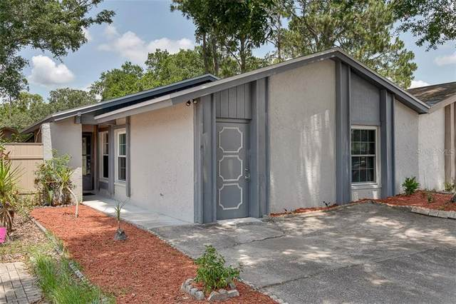 10514 Winrock Place, Tampa, FL 33624 (MLS #T3245222) :: Lucido Global