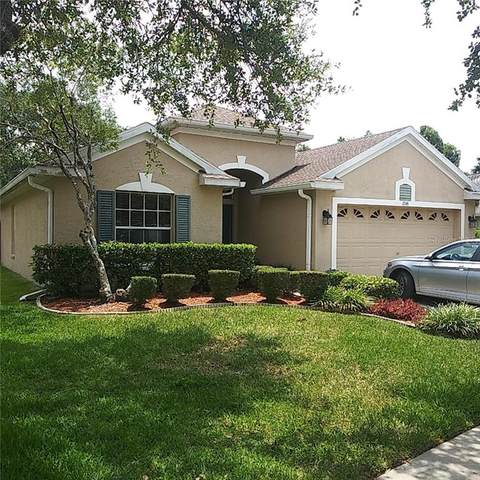 12141 Bishopsford Drive, Tampa, FL 33626 (MLS #T3245257) :: Griffin Group