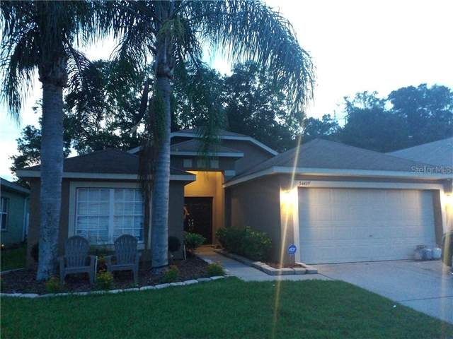 34439 Smart Drive, Zephyrhills, FL 33541 (MLS #T3245277) :: Cartwright Realty