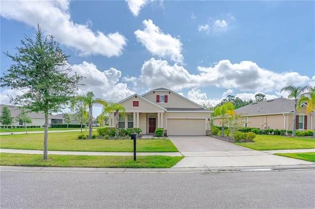 305 Birkdale Drive, Daytona Beach, FL 32124 (MLS #T3245287) :: Cartwright Realty