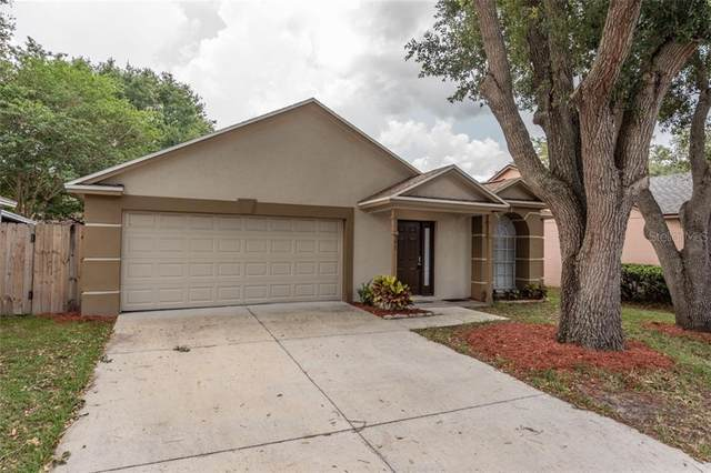 307 Brickyard Court, Valrico, FL 33594 (MLS #T3245326) :: Cartwright Realty