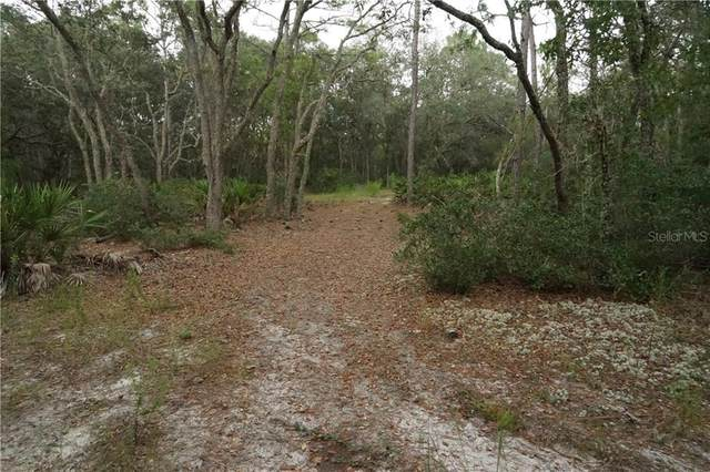 Softstone Drive, Webster, FL 33597 (MLS #T3245352) :: Realty Executives Mid Florida