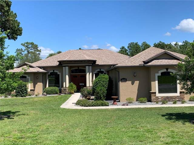 14639 Copeland Way, Spring Hill, FL 34604 (MLS #T3245358) :: Premier Home Experts