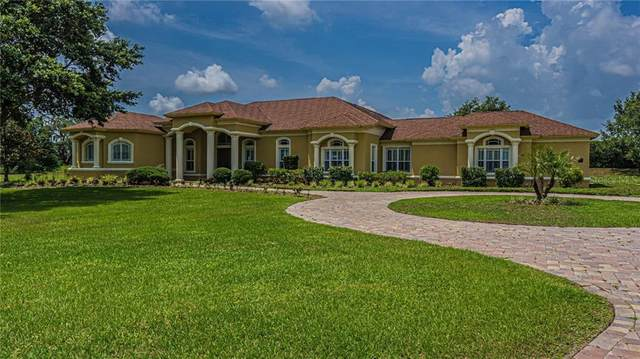 17118 Breeders Cup Drive, Odessa, FL 33556 (MLS #T3245361) :: The Duncan Duo Team