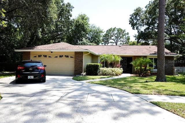 1002 Sylvia Lane, Tampa, FL 33613 (MLS #T3245407) :: Bustamante Real Estate