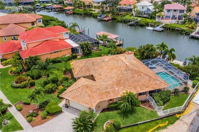 1008 Piano Lane, Apollo Beach, FL 33572 (MLS #T3245413) :: Team Bohannon Keller Williams, Tampa Properties