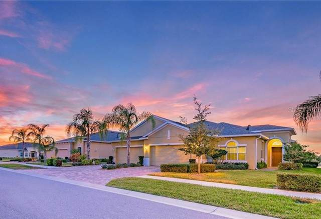 646 Chipper Drive, Sun City Center, FL 33573 (MLS #T3245435) :: Bustamante Real Estate
