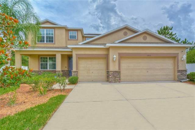 3450 Marmalade Court, Land O Lakes, FL 34638 (MLS #T3245452) :: Cartwright Realty