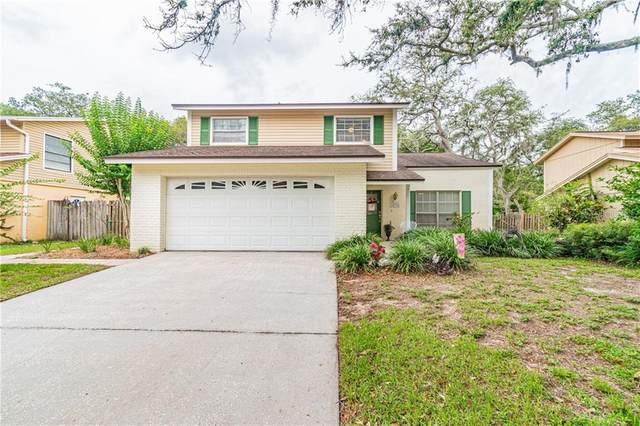 14726 Tall Tree Drive, Lutz, FL 33559 (MLS #T3245472) :: Lockhart & Walseth Team, Realtors