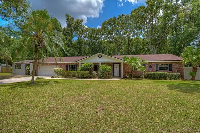 4719 Bloomingdale Avenue, Valrico, FL 33596 (MLS #T3245473) :: Griffin Group