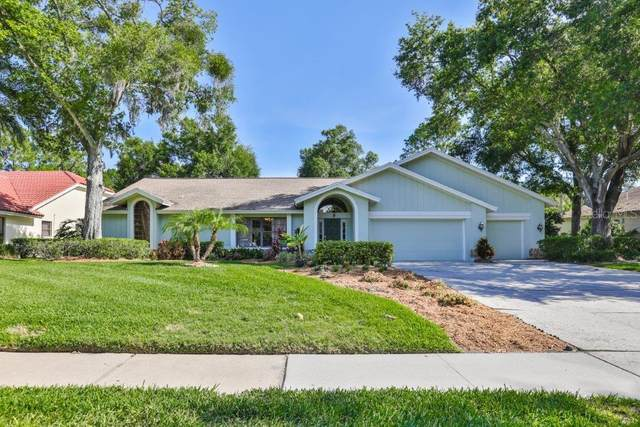 6205 Iroquois Court, Odessa, FL 33556 (MLS #T3245479) :: Team Bohannon Keller Williams, Tampa Properties