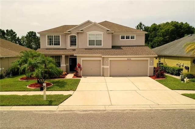 16514 Nikki Lane, Odessa, FL 33556 (MLS #T3245490) :: Team Bohannon Keller Williams, Tampa Properties