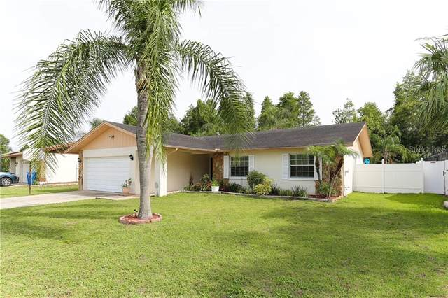 4909 Headland Hills Avenue, Tampa, FL 33625 (MLS #T3245500) :: Premier Home Experts