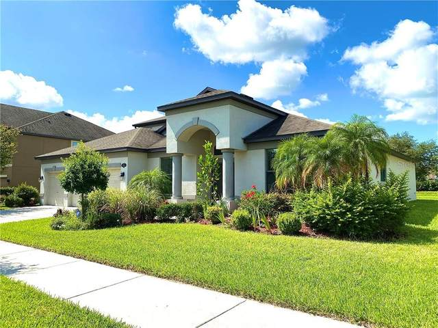 11932 Harpswell Drive, Riverview, FL 33579 (MLS #T3245530) :: Griffin Group