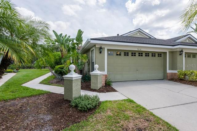 9834 Gingerwood Drive, Tampa, FL 33626 (MLS #T3245580) :: Cartwright Realty