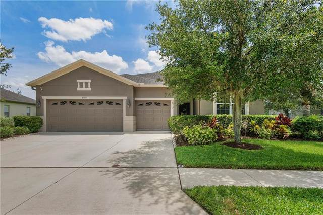 10519 Palm Cove Avenue, Tampa, FL 33647 (MLS #T3245598) :: Sarasota Home Specialists