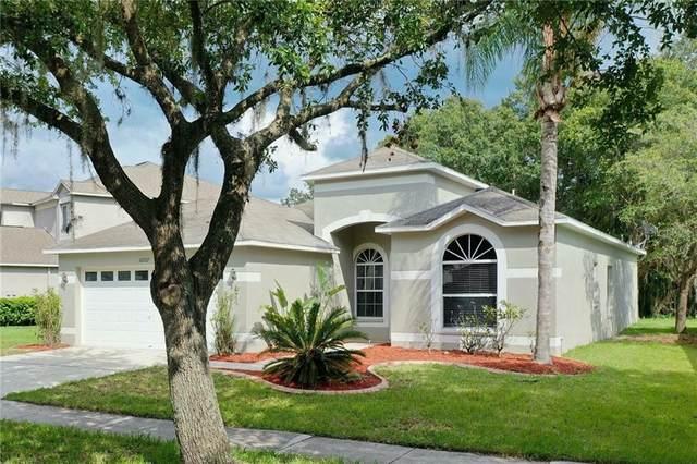 10537 Lucaya Drive, Tampa, FL 33647 (MLS #T3245602) :: CENTURY 21 OneBlue