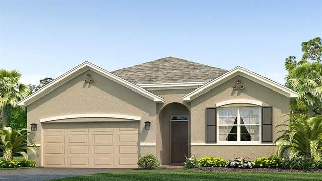 2907 Greenleaf Terrace, Parrish, FL 34219 (MLS #T3245687) :: Team Bohannon Keller Williams, Tampa Properties