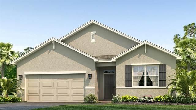 2837 Greenleaf Terrace, Parrish, FL 34219 (MLS #T3245709) :: Team Bohannon Keller Williams, Tampa Properties