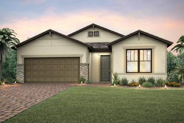 2621 Daisy Drive, North Port, FL 34289 (MLS #T3245717) :: Dalton Wade Real Estate Group