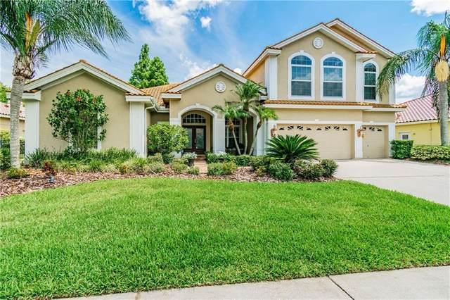 12018 Marblehead Drive, Tampa, FL 33626 (MLS #T3245785) :: Cartwright Realty