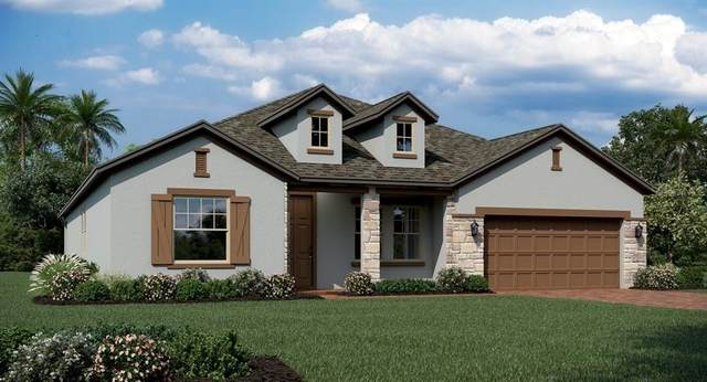 2118 American Beech Parkway, Ocoee, FL 34761 (MLS #T3245817) :: Griffin Group