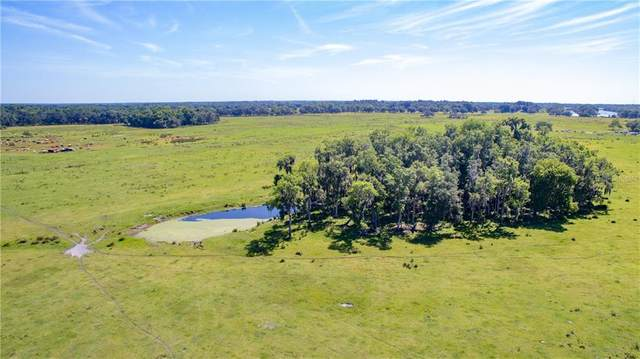 Address Not Published, Plant City, FL 33567 (MLS #T3245826) :: Griffin Group