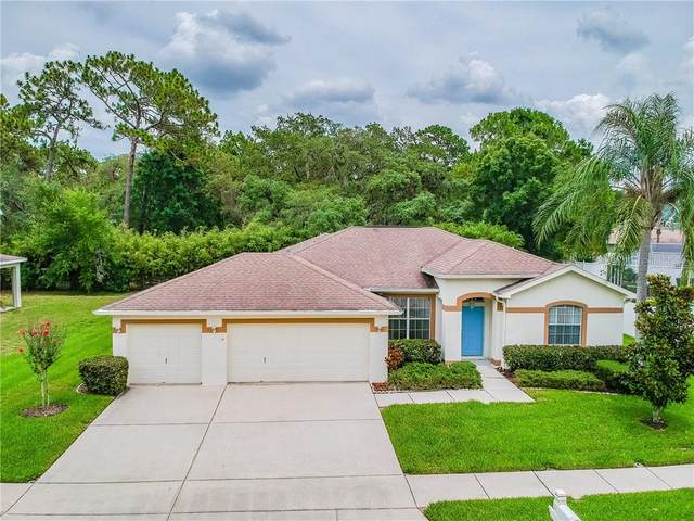 1132 Wyndham Lakes Drive, Odessa, FL 33556 (MLS #T3245846) :: Cartwright Realty