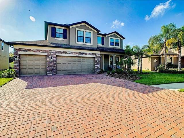 13319 Sunset Shore Circle, Riverview, FL 33579 (MLS #T3245865) :: GO Realty