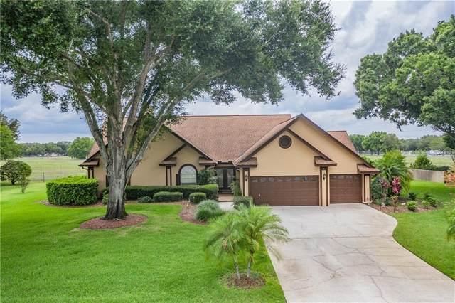 18412 Keystone Grove Boulevard, Odessa, FL 33556 (MLS #T3245876) :: Team Bohannon Keller Williams, Tampa Properties