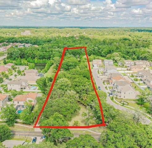 14807 Del Valle Road, Tampa, FL 33625 (MLS #T3245907) :: EXIT King Realty