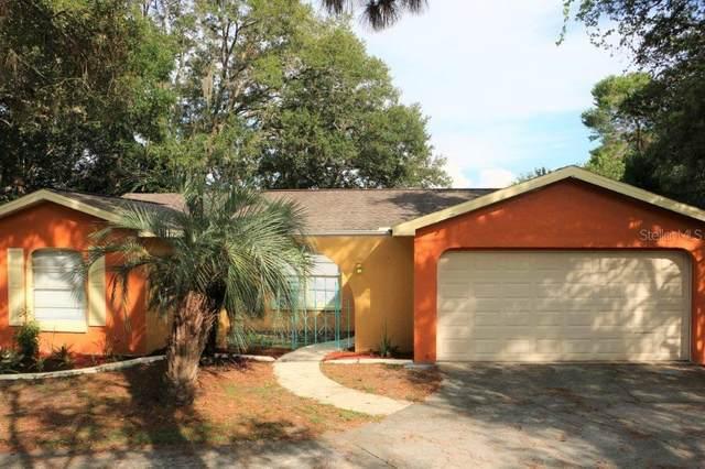 7310 Glen Cove Road, Weeki Wachee, FL 34613 (MLS #T3245992) :: KELLER WILLIAMS ELITE PARTNERS IV REALTY