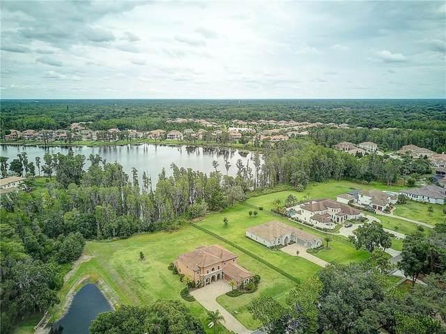3403 Crenshaw Lake Road, Lutz, FL 33548 (MLS #T3246010) :: Lockhart & Walseth Team, Realtors