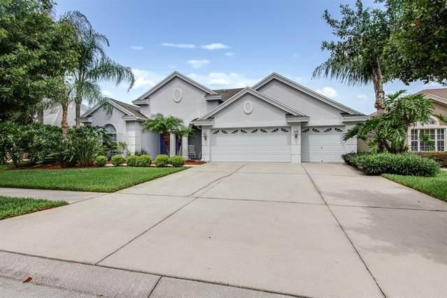 23453 Gracewood Circle, Land O Lakes, FL 34639 (MLS #T3246109) :: Cartwright Realty