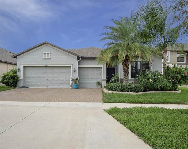 10046 Celtic Ash Drive, Ruskin, FL 33573 (MLS #T3246120) :: Bustamante Real Estate