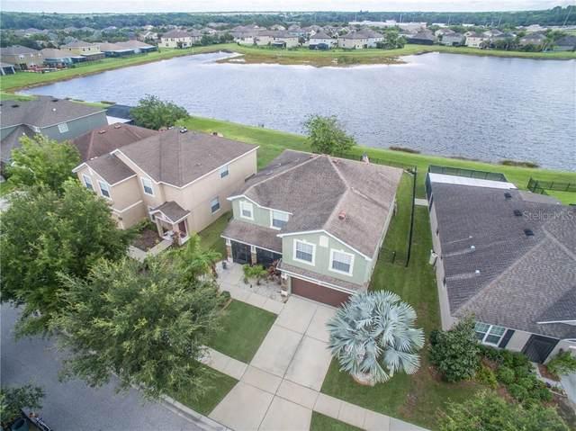 10344 Celtic Ash Drive, Ruskin, FL 33573 (MLS #T3246166) :: Bustamante Real Estate