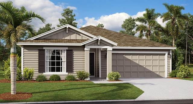 704 Simone Court, Haines City, FL 33844 (MLS #T3246211) :: Cartwright Realty