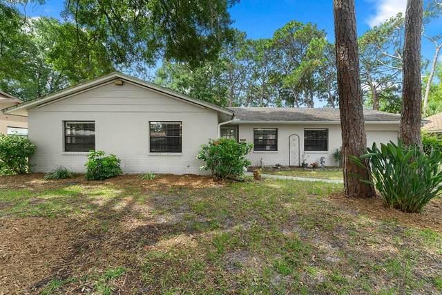 7720 W Hiawatha Street, Tampa, FL 33615 (MLS #T3246214) :: Cartwright Realty