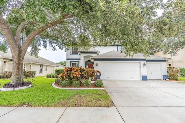 1079 Sawgrass Drive, Tarpon Springs, FL 34689 (MLS #T3246223) :: Alpha Equity Team
