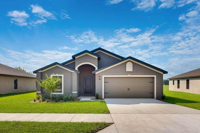 Address Not Published, Dundee, FL 33838 (MLS #T3246233) :: Cartwright Realty