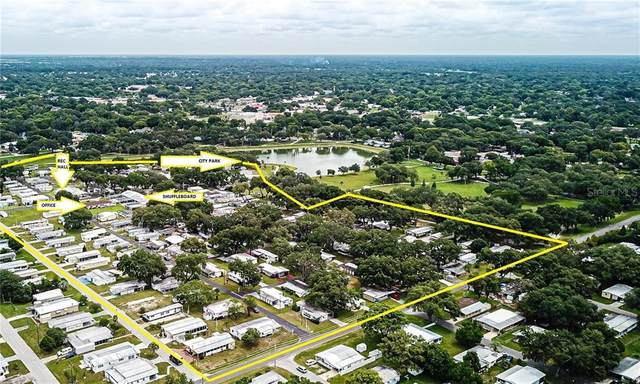 01234 Confidential Drive, Zephyrhills, FL 33542 (MLS #T3246289) :: Team Bohannon Keller Williams, Tampa Properties
