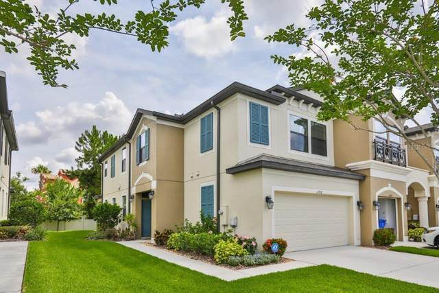 11718 Crowned Sparrow Lane, Tampa, FL 33626 (MLS #T3246357) :: Cartwright Realty